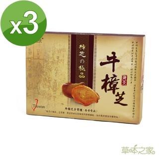 【  草本之家】極品牛樟芝錠(20粒X3盒)