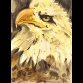 【劉其偉藝術典藏】親筆簽名限量發行石版畫(保育動物系列--老鷹)