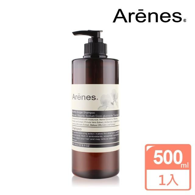 【Arenes】穗花山奈香氛植萃洗髮露(500ml)