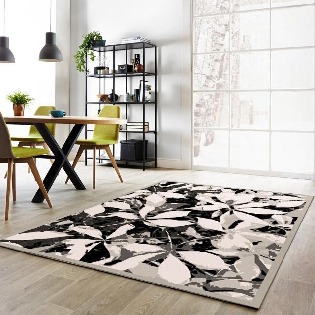 【范登伯格】夏蔓柔光絲質感地毯-燦爛(160x230cm)