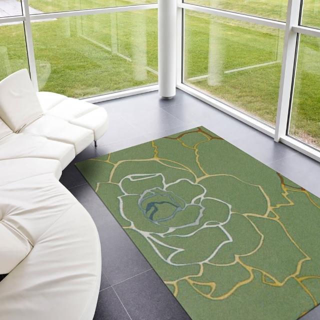 【范登伯格】德克斯特六色絲光地毯-玫瑰花-共兩色(160x230cm)