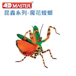 【4D  MASTER】昆蟲系列-魔花螳螂FLOWER MANTIS