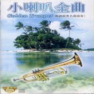 【珍藏系列】小喇叭金曲10CD(最佳小喇叭演奏休閒音樂)