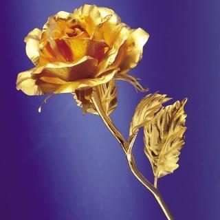 【開運陶源】金箔花 物以類聚 以金養金(黃金 玫瑰花或康乃馨)