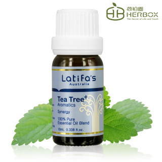 【Herbox 荷柏園】淨化高手 複方精油 10ml(Tea Tree+)