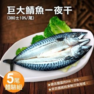 【優鮮配】挪威當季鯖魚一夜干5尾體驗組(約380g/整尾)