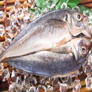 【華得水產】生薄鹽竹筴魚一夜干5件組(200g/尾)