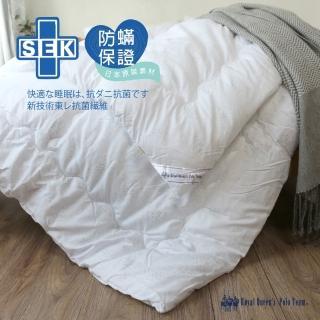 【R.Q.POLO】防蹣抗菌舒棉被(被胎/標準雙人6x7尺)