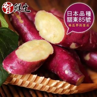 【賀鮮生】日本團購美食-紫皮奶香栗子地瓜10包入(1kg/包)