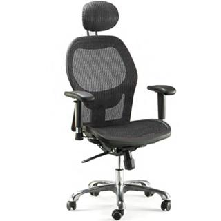 【aaronation愛倫國度】靠枕透氣尼龍網背主管椅(兩色可選 i-RS213SGA)