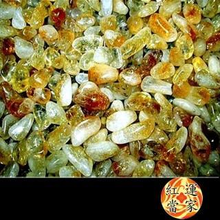 【紅運當家】天然招財黃水晶碎石 淨重600公克(粗顆粒)