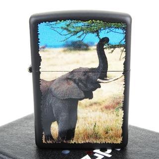 【ZIPPO】美系-Elephant-大象圖案設計打火機