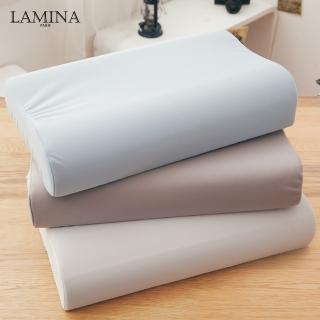 【LAMINA】高科技膜防蹣防水記憶枕-1入