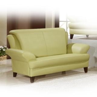 【品生活】時尚簡約風格 雙人沙發(808)