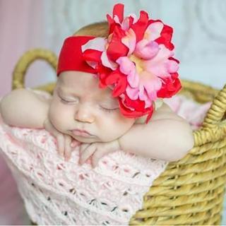 【美國 Jamie Rae】100%純棉髮帶_ 經典紅寬髮帶/紅粉牡丹(JRHBP13)