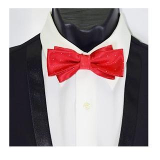 【拉福】飛翼色織銀絲點領結新郎結婚領結糾糾(大紅色)