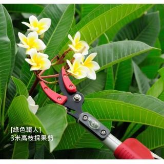 【綠色職人】3米高枝採果剪+鋸片(高枝剪 採果剪)