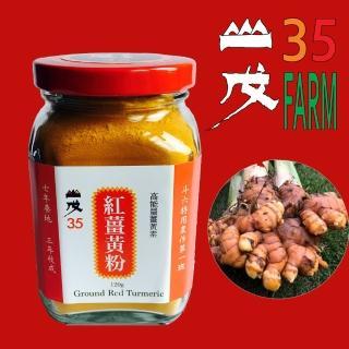 【台灣山戊35】能量紅薑黃粉(120g)
