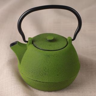 【日本CB JAPAN】TEKKI系列鑄鐵急須泡茶壺0.9L林-綠