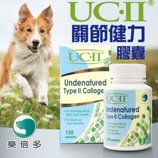 【UC-II】樂倍多關節健力膠囊120顆(非變性二型膠原蛋白)