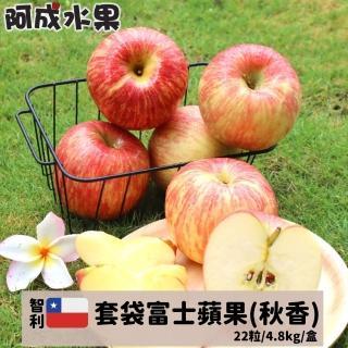 【阿成】智利特大套袋富士蘋果秋香(6粒/2.5kg/盒)