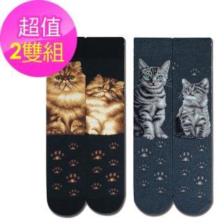 【JHJ DESIGN】喵星人系列 - 金吉拉/美國短毛貓中統襪-2雙(加拿大品牌 MIT)