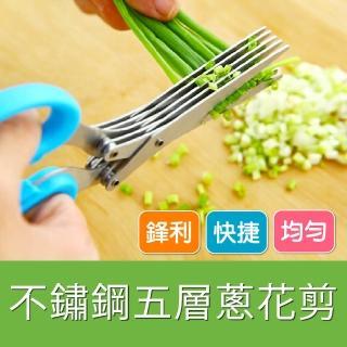 【廚房必備】不鏽鋼 五層剪刀(創意用品 碎紙剪 五層剪刀 碎食剪 料理剪刀)