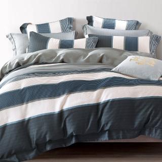 【SANDRA仙朵拉】100%純天絲TENCEL雙人七件式兩用被床罩組(似水流年 雙人5x6.2尺)
