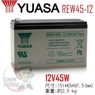 【YUASA湯淺】REW45-12高率型密閉式鉛酸電池(不漏液 免維護 高性能 壽命長)