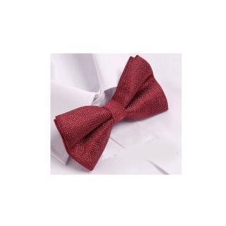 【拉福】兒童領結糾糾亮面小紳士專用領結(紅色銀絲)   拉福