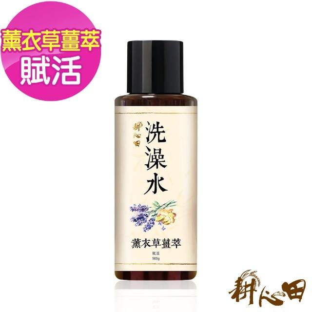 【耕心田】薰衣草薑萃賦活洗澡水(500gX1入)