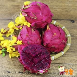 【果之家】產地直送鮮甜甘美紅肉火龍果5台斤(約7-9顆入)好評推薦  果之家
