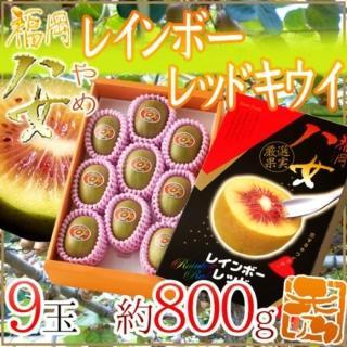 【WANG 蔬果】日本福岡彩虹紅心奇異果(原裝800g±10%/約8~9顆)  WANG 蔬果
