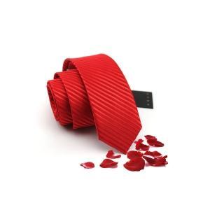 【拉福】領帶8cm寬版領帶拉鍊領帶(亮絲)  拉福