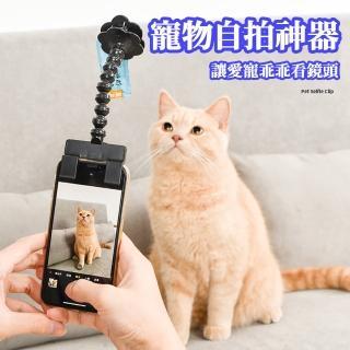 【ROYALLIN 蘿林嚴選】寵物用品自拍神氣狗狗看鏡頭夾子(自拍神器)強力推薦  ROYALLIN 蘿林嚴選