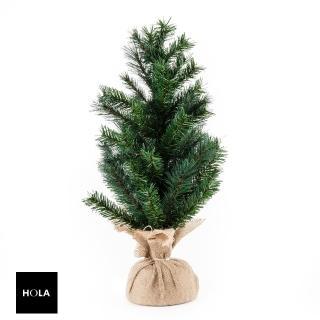 【HOLA】經典松針混葉聖誕樹60cm  HOLA