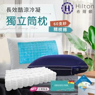 【Hilton 希爾頓】酷涼冷凝獨立筒枕(夏威夷系列-涼感枕)評價推薦  Hilton 希爾頓
