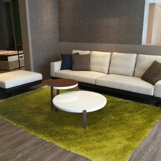 【山德力】薇尼絲地毯 - 蒼翠綠 160x230cm(地墊 柔順 漸層 質感 長毛)  山德力
