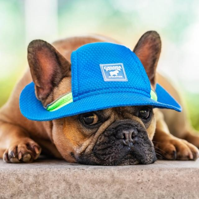 【CANADA POOCH】涼感漁夫帽-藍色(寵物配件-CANADA POOCH-Cooling Hat Blue)