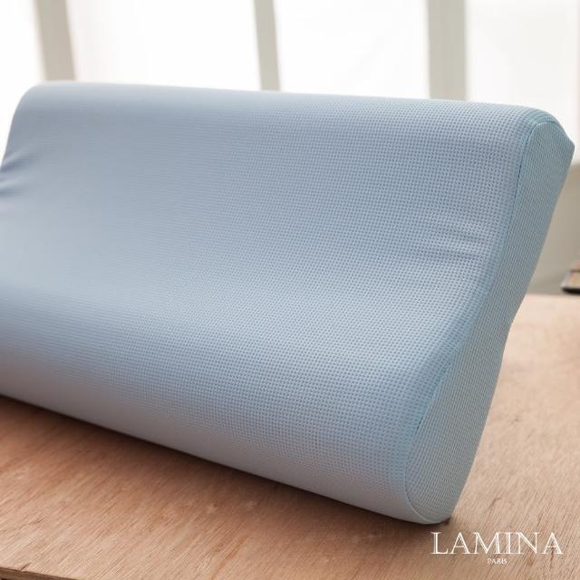 【LAMINA】防蹣抗菌健康記憶枕(1入)