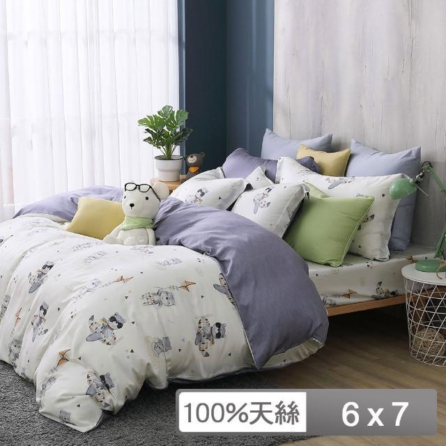 【HongYew 鴻宇】雙人薄被套 天絲300織 台灣製(比飛熊)
