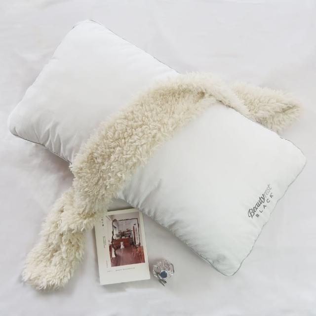 【美國席夢思BeautyRest旗艦品牌】黑標枕頭2入(Standard Queen)