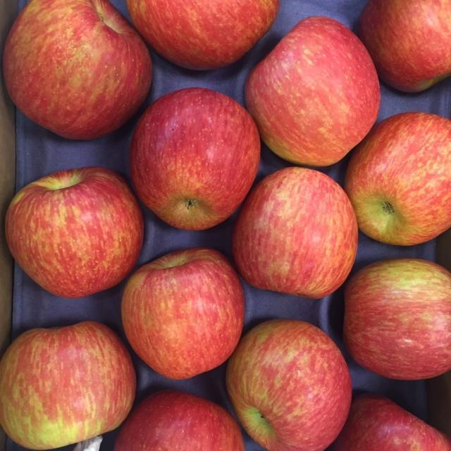 【馥果FruitGo】智利富士蘋果8粒禮盒/2公斤(陽光富士蘋果)