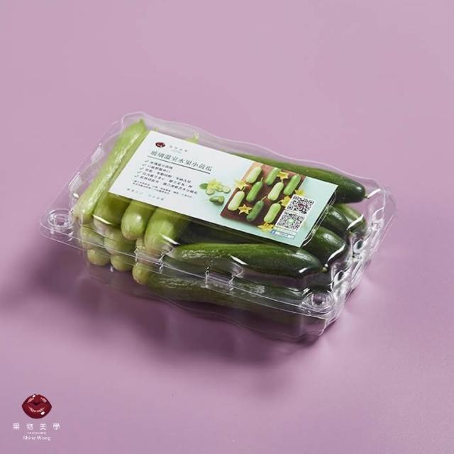 【ShineWong 果物美學】雙色水果小黃瓜+彩虹小番茄嚐鮮組(歐盟頂級溫室規格栽種)