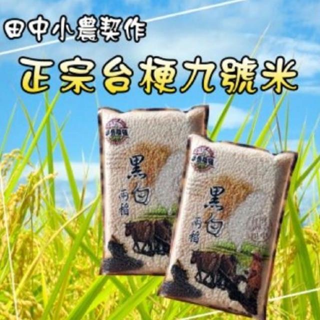 【田中小農契作】台梗九號米-小資6包組