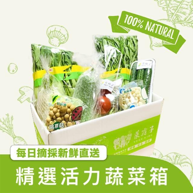 【菜霸子】蔬菜箱(健康蔬菜組合箱-組合隨機 廠商直送 現貨)