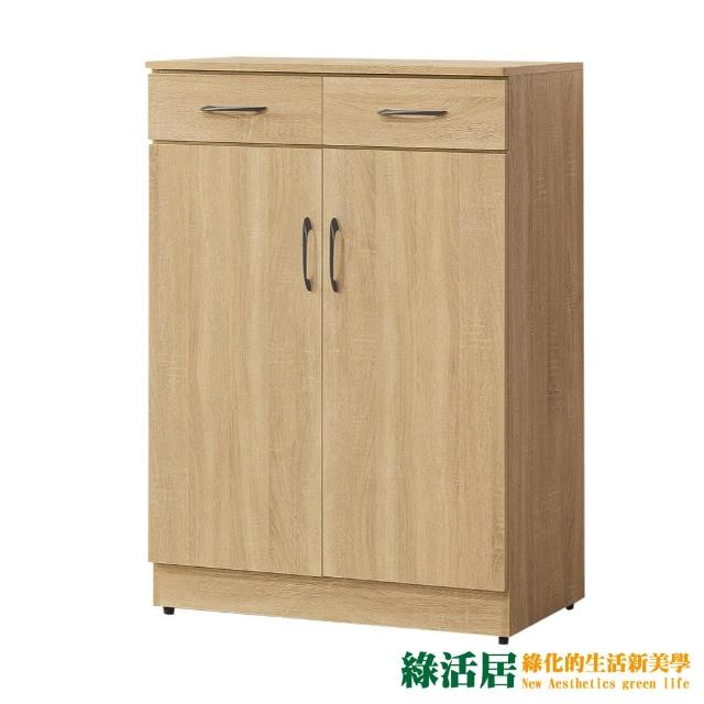 【綠活居】斯里巴 現代2.7尺二門二抽鞋櫃/收納櫃(二色可選)