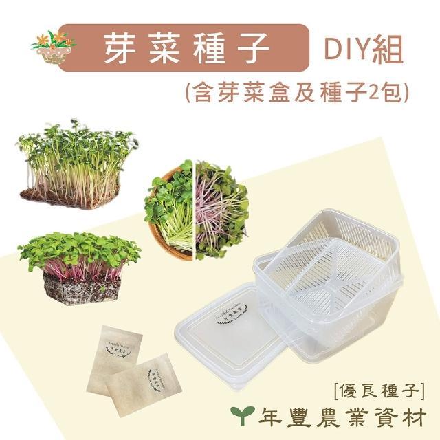 【優良種子】芽菜DIY組 含芽菜盒及兩包種子(日本製芽菜盒)
