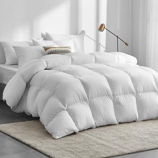【A-nice】台灣製 專櫃等級 頂級JIS日規 極保暖型 95%頂級天然鵝絨被(雙人 6X7呎)