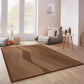 【范登伯格】西堤簡樸圈毛編織地毯(170x230cm)